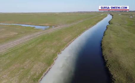 Poluare masivă în Buzău. Apa unui râu a devenit alb-lăptoasă, iar oamenii nu știu de unde e