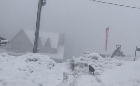 Ninsori la mijlocul lui aprilie. Zăpadă de peste 1 metru la munte, iar vacanța de Paște va fi ca una de iarnă