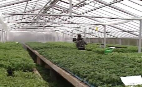 Universitățile de Științe Agricole au pătruns puternic pe piața alimentară. Ce produse oferă