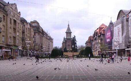 Autoritățile din Timișoara vor să interzică hrănirea porumbeilor în spațiul public