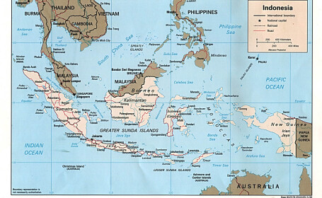 Cutremur de 6.6 grade Richter in Indonezia