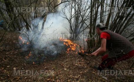 Localnicii i-au ajutat pe pompieri sa stinga incendiul