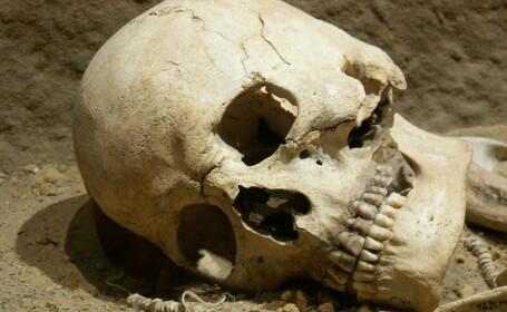 Craniu uman