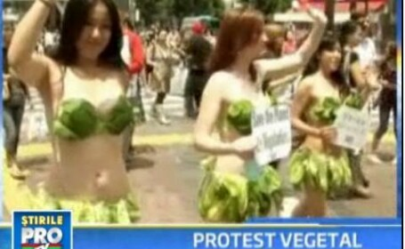 Tokyo: vezi ce se mai poarta la protestele vegetariene!