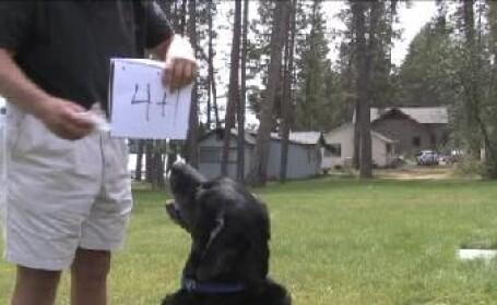 caine matematician
