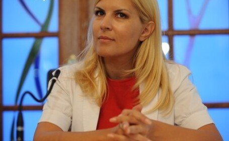 Udrea: Peste 1 milion de romani primesc ilegal pensii si ajutoare