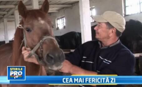 Final fericit in povestea calului care urma sa ajunga salam in Italia din cauza saraciei din Beclean