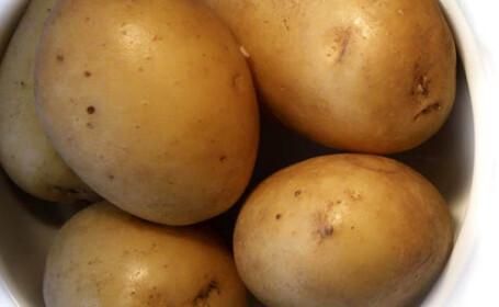 O familie intreaga si-a pierdut viata intr-o pivnita din cauza unor cartofi intrati in putrefactie