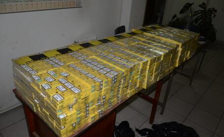 tigari contrabanda, confiscate