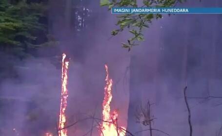 Un incendiu puternic, in apropiere de Rezervatia Naturala din Retezat. Focul a fost stins in 2 zile