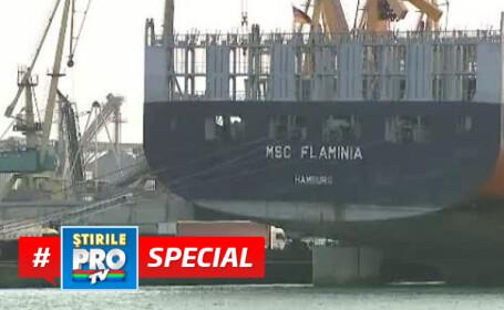 nava flaminia special
