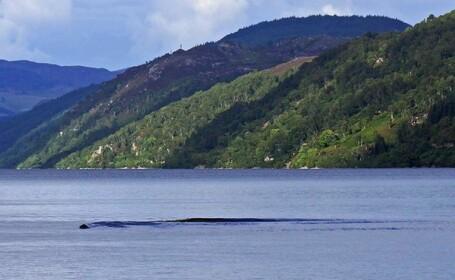 Monstrul din Loch Ness, din nou la suprafata. Fotografia pe care a realizat-o un turist. FOTO