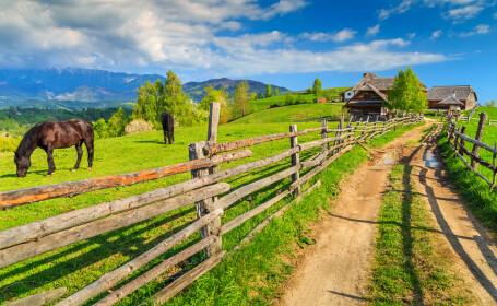 Romania, pe harta turismului european la pas. Doua trasee turistice de lunga distanta vor traversa Muntii Carpati