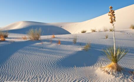 Desert - GETTY