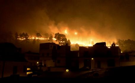 Portugalia este sub asediul focului. Autoritatile sunt in alerta dupa ce in tara au izbucnit peste 200 de incendii