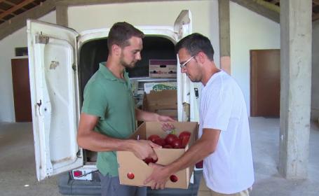 Ce soluție au găsit trei fermieri din Bihor pentru fructele și legumele care nu se vând la piață