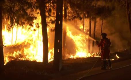 incendii Portugalia