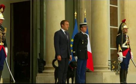 Cum și-a botezat Emmanuel Macron câinele. Numele său, inspirat de un roman