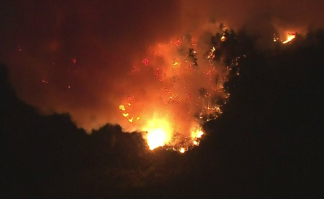 foc california
