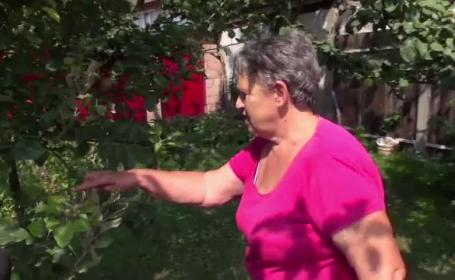 """Fenomen neobișnuit în livezile din România. """"Am rămas uimită, nu mi-a venit să cred"""""""