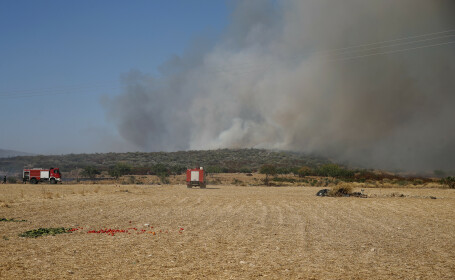 Zeci de incendii în jurul Atenei. Autorităţile dau vina pe chiştoace şi grătare