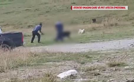 Bărbat filmat în timp ce lovește cu bâta un câine ciobănesc