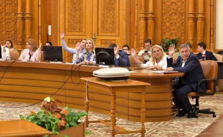 PSD nu renunță la Legea recursului compensatoriu. Deputații juriști au amânat dezbaterile