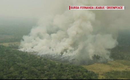 Flăcările din pădurea amazoniana, departe de-a fi stinse. Acuzaţiile aduse de indigeni