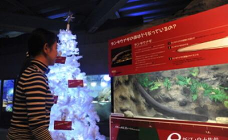 Acvariul Enoshima din Tokyo