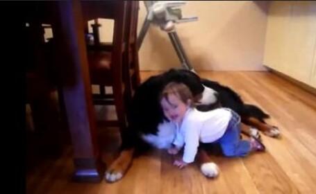VIDEO. Bebelusul, cel mai bun prieten al cainelui. Imaginile la care au ras peste 300.000 de oameni