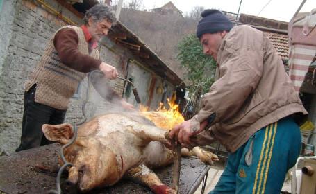 porc sacrificat