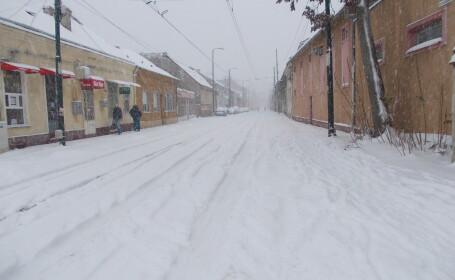prima ninsoare, Timisoara