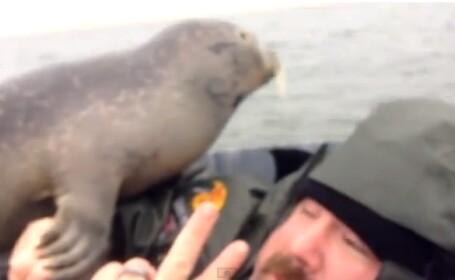 Surpriza traita de acest vanator. Cine a venit sa se imprieteneasca cu el in barca. VIDEO