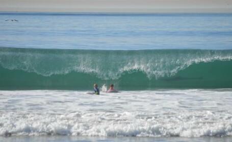 O mama si-a pozat fiul facand surf in California. Un rechin a aparut in apa, in spatele baiatului