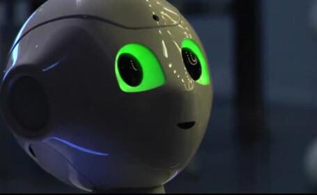 robotul pentru cei singuri