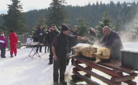 Distractie la munte, cu zapada si gratare. Turistii din Marginimea Sibiului s-au bucurat de slanina si vitel la protap