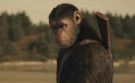 planeta maimutelor