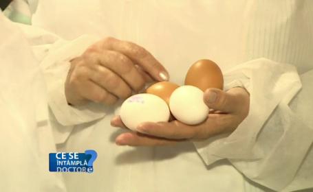Diferenta dintre oul alb si cel brun. Proprietatile benefice ale grasimilor din acest aliment si cu ce sa il combinam