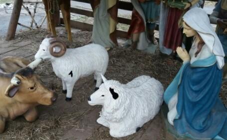 Statuetă cu Iisus, dispărută dintr-un aranjament și înlocuită cu o oaie. Autoritățile au venit cu explicații