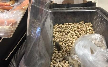 Amendă de 10.000 de lei pentru magazinul unde un şoarece a fost pozat în lada cu fistic