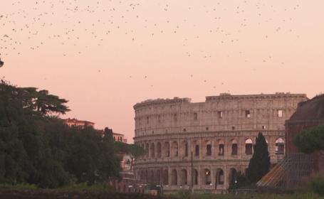 Grauri Roma