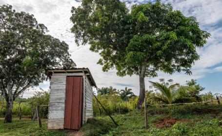O fetiță și-a denunțat tatăl, după ce a mințit-o că îi va construi un WC