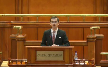Deputat PNL: OUG 114 a fost respinsă în Comisia de IT