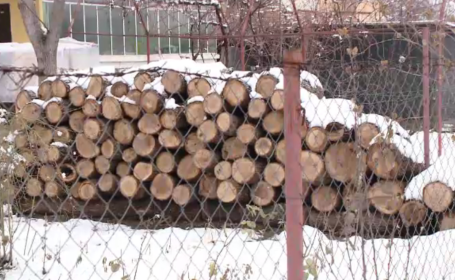 scumpire lemne