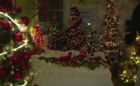Doi soți din Germania și-au decorat casa cu 350 de brazi de Crăciun. Au intrat în Cartea Recordurilor