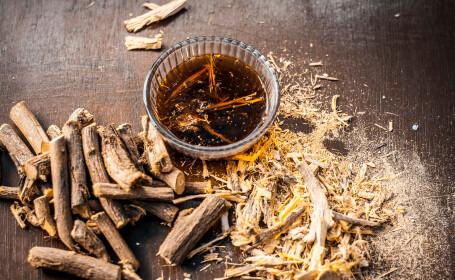 Preşedintele Turkmenistanului propune lemnul dulce ca remediu pentru Covid-19