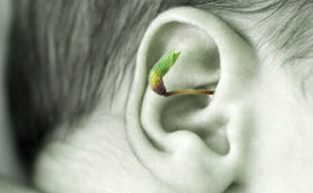 Copil dintr-un centru de plasament, cu un bob de grau incoltit in ureche