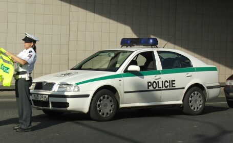 Politia ceha