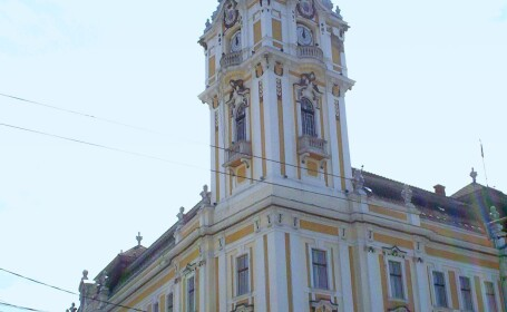 Primaria Cluj-Napoca