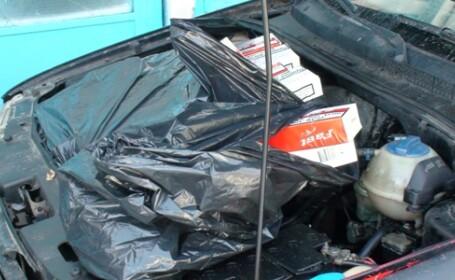 tigari confiscate caras-severin